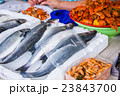 fresh fish in different sizes laying on a table 23843700