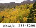 札幌国際スキー場 紅葉ゴンドラからの眺め 23845299