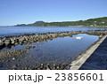 稲取温泉 海 海岸の写真 23856601