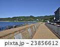 稲取温泉 伊豆 海の写真 23856612
