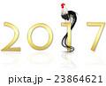 2017 酉年 2017年のイラスト 23864621