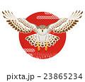 鷹と太陽 年賀状素材 23865234