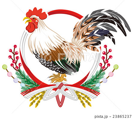 雄鶏と水引き飾り 年賀状素材 23865237