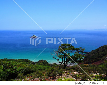無人島の海岸(長崎県野崎島) 23877634