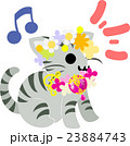 綺麗なアクセサリーを身につけた可愛い猫 23884743