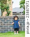 元気な子供 23887971