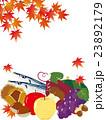 秋の味覚 23892179