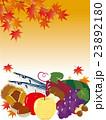 秋の味覚 23892180