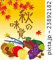秋の味覚 23892182