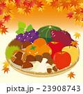 秋の味覚かご盛りイラスト 23908743