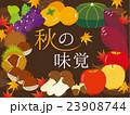 秋の味覚イラスト 23908744
