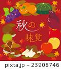 秋の味覚 秋 秋の食材のイラスト 23908746