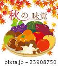 秋の味覚 秋 秋の食材のイラスト 23908750