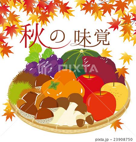 秋の味覚かご盛りイラスト 23908750