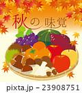 秋の味覚 秋 秋の食材のイラスト 23908751
