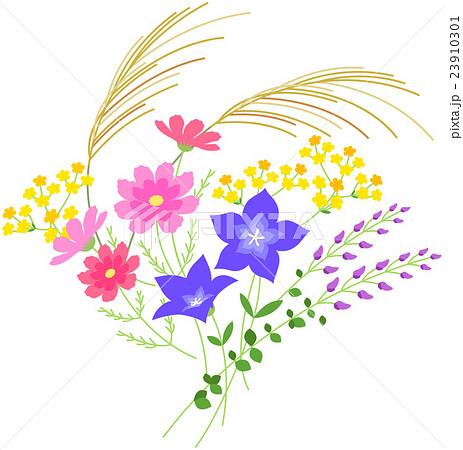 秋の花いろいろのイラスト素材 23910301 Pixta