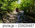修善寺(静岡県-伊豆市修善寺) 23920487
