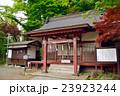 静岡県小山町金時神社の写真 23923244