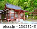 静岡県小山町金時神社の写真 23923245