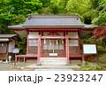 静岡県小山町金時神社の写真 23923247