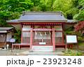 静岡県小山町金時神社の写真 23923248