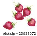 苺 果物 フルーツのイラスト 23925072