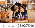 Halloween celebration 23927540