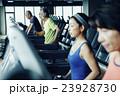 シニア マシントレーニング 23928730