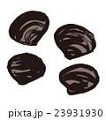 蜆 貝 貝類のイラスト 23931930