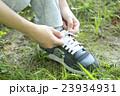 靴紐を結ぶ 23934931