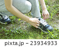 靴紐を結ぶ 23934933