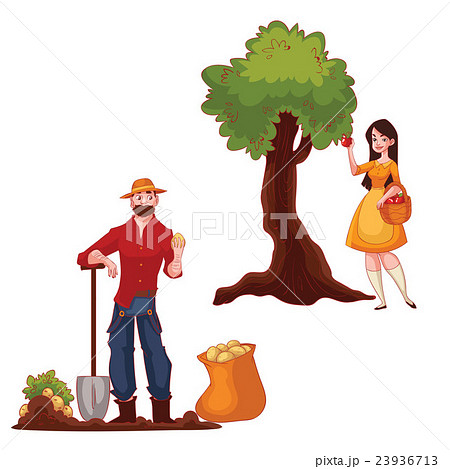 Man harvesting potato and woman picking apples 23936713