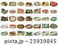 海産物いろいろ 23939845