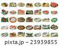 海産物いろいろ枠 23939855