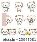 熊 動物 キャラクターのイラスト 23943081