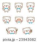 熊 動物 キャラクターのイラスト 23943082