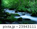 2016 6月 奥入瀬渓流 23943111