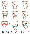 熊 動物 キャラクターのイラスト 23943182