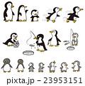 ペンギン 23953151