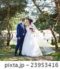嫁 新婦 花嫁の写真 23953416
