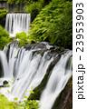 白糸の滝 23953903