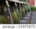 湧玉池の水 23972673