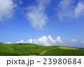 阿蘇 新緑 草原の写真 23980684