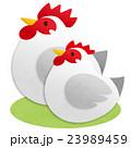 鶏 酉 鳥のイラスト 23989459