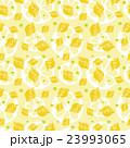 レモン 果物 柑橘類のイラスト 23993065