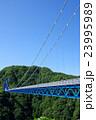 橋 竜神大吊橋 吊り橋の写真 23995989