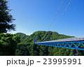 橋 竜神大吊橋 吊り橋の写真 23995991