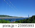 橋 竜神大吊橋 吊り橋の写真 23995993
