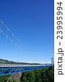 橋 竜神大吊橋 吊り橋の写真 23995994
