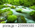 奥入瀬渓流 23999380